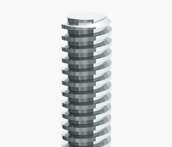 lead screw thread form
